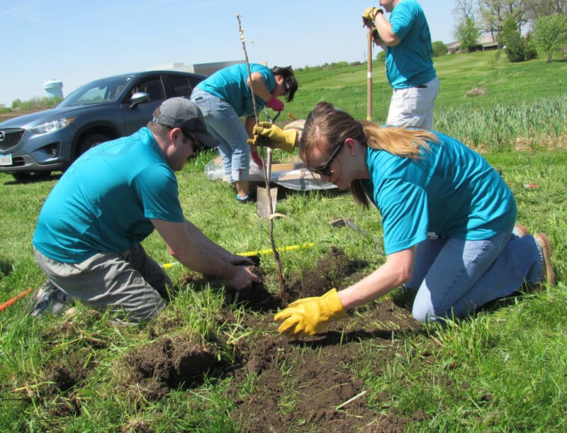 olunteers Henry Hill and Jennifer Tebbe helped plant fruit and nut trees